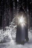 Vrouw met gloeiende orb in bosfantasie stock foto
