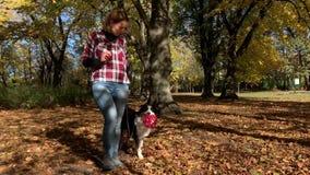 Vrouw met hond in park stock videobeelden