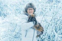 Vrouw met hondpekinees in de winterpark stock afbeeldingen