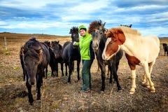Vrouw met Ijslandse Poneys Stock Foto's