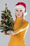 Vrouw met Kerstmisboom Stock Fotografie