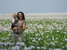 Vrouw met kind op een papavergebied Stock Fotografie