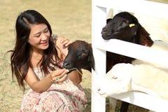 Vrouw met lam op een platteland Stock Afbeeldingen