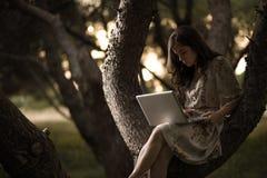 Vrouw met Laptop op een Boom stock afbeeldingen