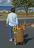 Vrouw met mandkar met bloemen stock afbeeldingen