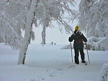 Vrouw met sneeuwschoenen in de winterbos Royalty-vrije Stock Foto
