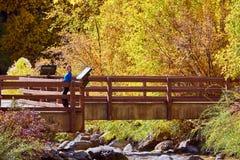 Vrouw op brug De herfstbomen en rivier royalty-vrije stock fotografie