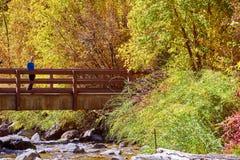 Vrouw op brug De herfstbomen en rivier stock foto