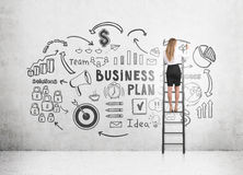 Vrouw op de schets van het het businessplan van de laddertekening Royalty-vrije Stock Fotografie
