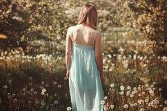 Vrouw op een bloemgebied Royalty-vrije Stock Foto