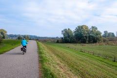 Vrouw op een fiets op de dijk langs de alluviale gebieden langs stock afbeeldingen