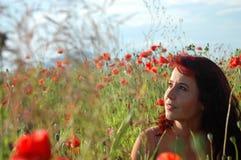 Vrouw op een papavergebied stock foto's