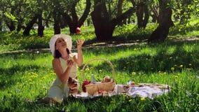 Vrouw op een picknick in het hout die met appelen jongleren stock videobeelden