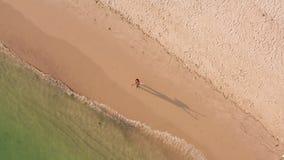 Vrouw op een tropische strandantenne van hierboven