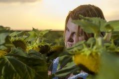 Vrouw op het gebied van de zonbloem Stock Fotografie