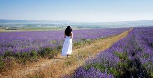 Vrouw op lavendelgebied Royalty-vrije Stock Afbeelding