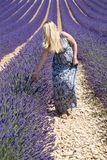 Vrouw op lavendelgebied Stock Foto