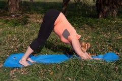 Vrouw op middelbare leeftijd in een oranje yoga van de T-shirtpraktijk in aard royalty-vrije stock afbeelding