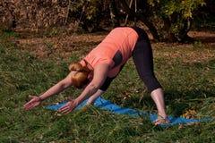 Vrouw op middelbare leeftijd in een oranje yoga van de T-shirtpraktijk in aard stock foto's