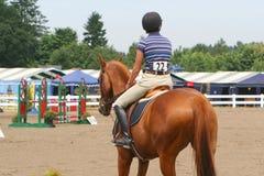 Vrouw op paard royalty-vrije stock afbeeldingen