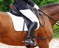 Vrouw op paard in rijbroek Royalty-vrije Stock Foto's