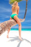 Vrouw op palm royalty-vrije stock afbeelding