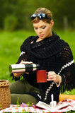 Vrouw op Picknick Stock Fotografie