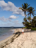 Vrouw op tropisch strand Royalty-vrije Stock Afbeeldingen