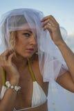 Vrouw portreit in bruidssluier Stock Fotografie