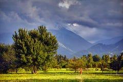 Vrouw in rode kleding in het park met bergen Royalty-vrije Stock Fotografie