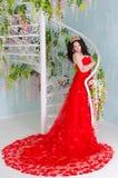 Vrouw in rode lange kleding Stock Foto