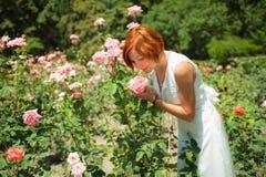 Vrouw in rozentuin Royalty-vrije Stock Afbeeldingen