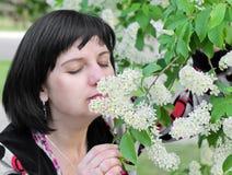 Vrouw, ruikende bloemen Royalty-vrije Stock Afbeelding