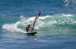 Vrouw Sailboarding in Hawaï Stock Foto's