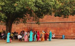 Vrouw in Sari Stock Afbeelding