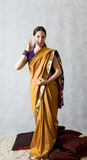 Vrouw in Sari Stock Fotografie
