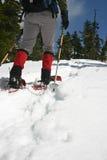 Vrouw in sneeuw wandeling Stock Foto