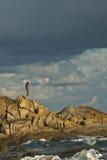 Vrouw in stormachtig landschap Royalty-vrije Stock Foto's