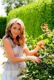 Vrouw in tuin Royalty-vrije Stock Afbeeldingen