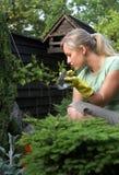 Vrouw in tuin Stock Afbeeldingen