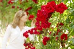 Vrouw in tuin van rozen Stock Fotografie