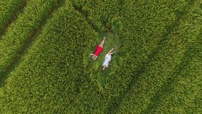 Vrouw twee met blondehaar in een rode en blauwe kleding ligt in het gebied met tarwe stock videobeelden