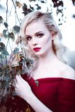 Vrouw van het manier de schitterende jonge blonde in mooie rode kleding in een sprookje bos magische atmosfeer Retoucheerd stemme royalty-vrije stock foto