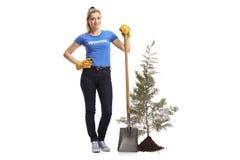 Vrouw vrijwilligers status met een schop naast een jonge boom stock foto's