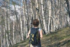 Vrouw wandeling in het bos, één persoon die in de bos, backpacking reis van het de zomeravontuur, achtermening lopen, stemde beel Stock Afbeelding