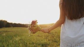 Vrouw in witte kleding die op het gebied met boeket van wilde bloemen op de zomeravond gaan stock videobeelden
