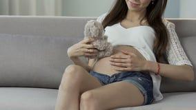Vrouw zwanger met jong geitjeholding teddybear dicht bij buik het spelen, anticiperen stock videobeelden