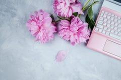 Vrouwelijk bedrijfsmodel met roze laptop en pioenenboeket royalty-vrije stock afbeelding
