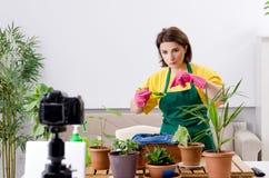 Vrouwelijk blogger verklarend houseplants het groeien royalty-vrije stock fotografie