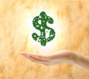Vrouwelijk de dollarteken van de handholding Stock Fotografie